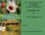"""Faça Um sessão de Autógrafos com o Autor do Livro """"Ecologia e Criatividade"""""""